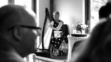 harp-1613223_1920